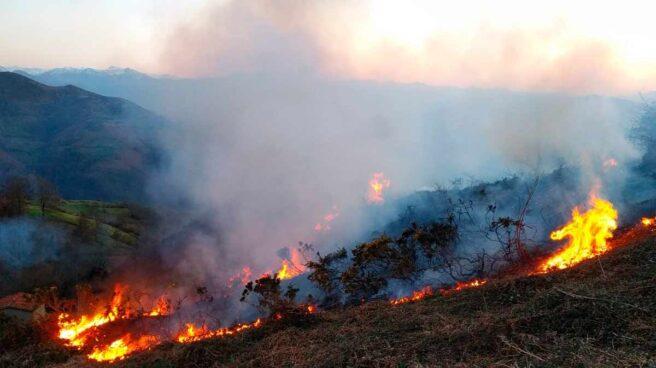 Incendio forestal en Asturias.
