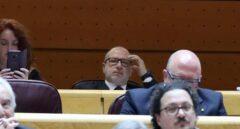 Francisco José Alcaráz (en el centro, al fondo), durante su primera sesión en el Senado.