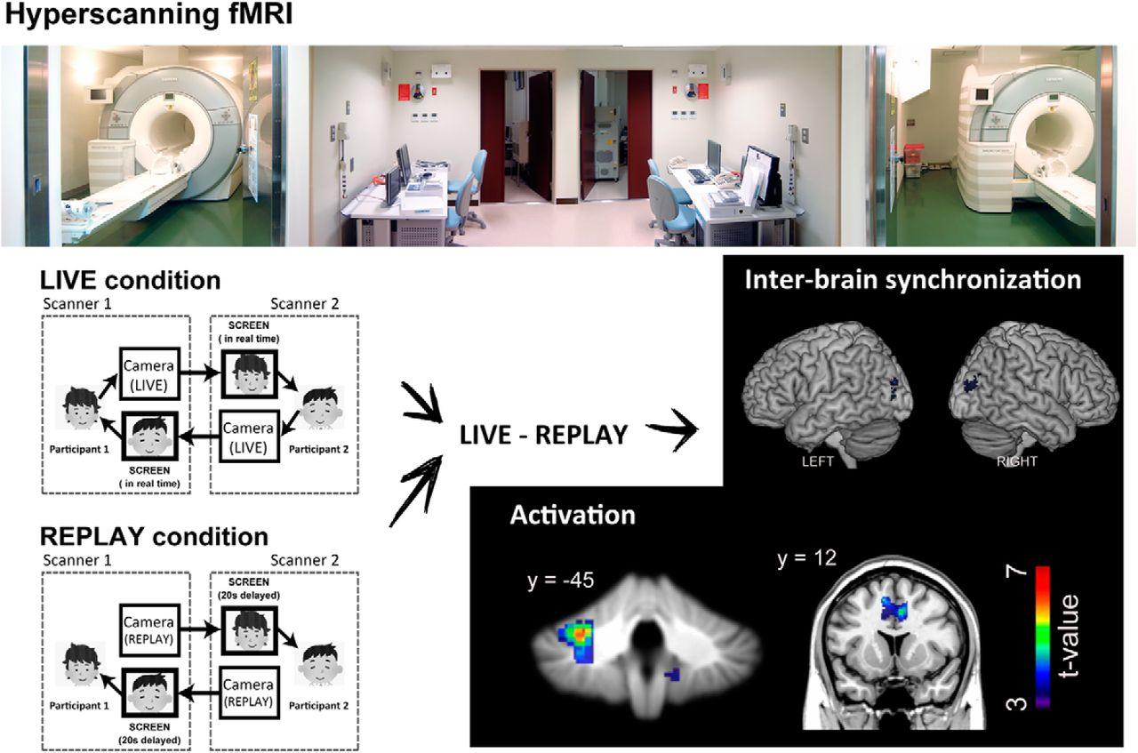 Desarrollo del experimento de visualización neuronal ante los cara a cara de sujetos experimentales