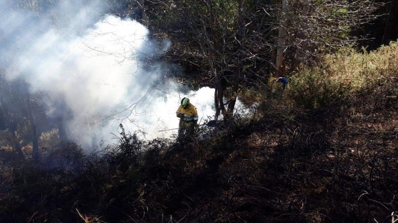 Extinción de un incendio por miembros del operativo de Medio Natural.