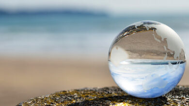 La Fundación Agbar, primer puesto en el ranking de transparencia en toda España