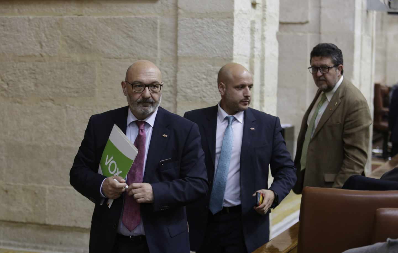 Los diputados de Vox en el Parlamento andaluz.