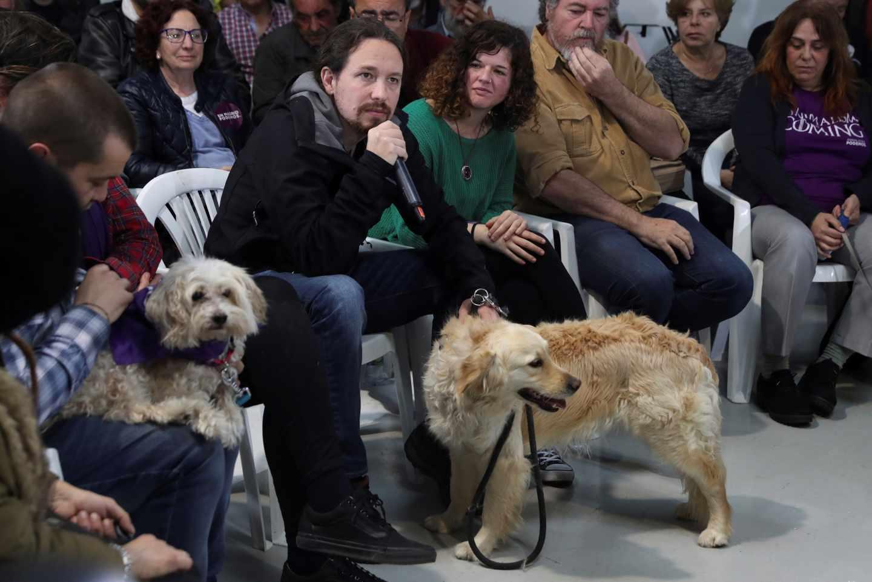 El candidato de Unidas Podemos a la presidencia del Gobierno, Pablo Iglesias (2i), participa en un acto contra el maltrato animal, este viernes en Madrid.