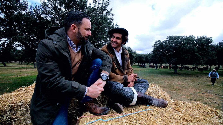 Abascal y Morante contemplan los toros en el campo salmantino