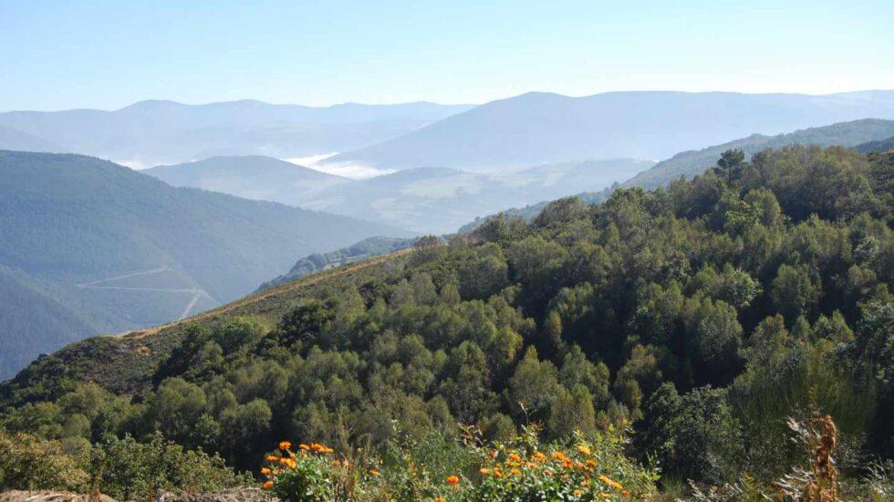 Ruta Mazo de Mon, San Martín de los Oscos
