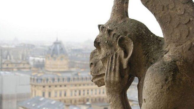 Gárgola Notre Dame.