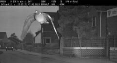 Imagen del radar que 'pilló' a la paloma por exceso de velocidad.