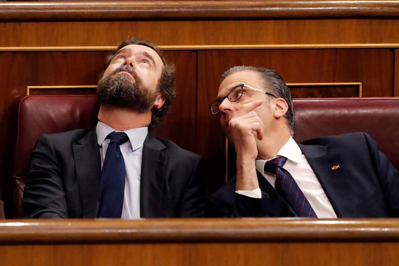 Iván Espinosa de los Monteros (izquierda) junto a Javier Ortega Smith, observando por primera vez la cúpula del Congreso de los Diputados.