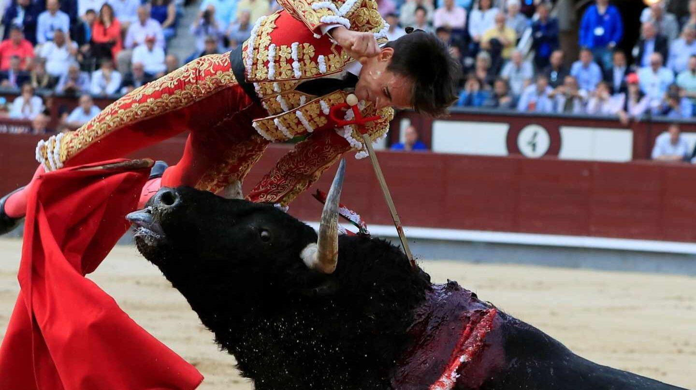 Grave cornada al torero de Torrejón, Gonzalo Caballero, en Las Ventas