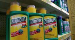 Herbicidas 'RoundUp' de Monsanto.