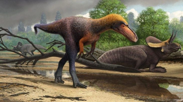 Dibujo del Suskityrannus, el primo pequeño del tiranosaurio