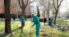 Empleados trabajando en la limpieza de un jardín público.