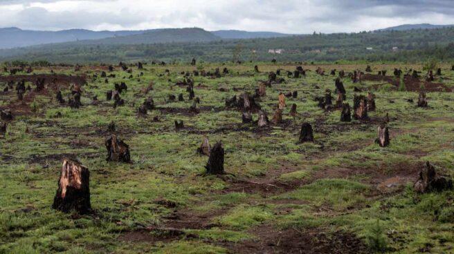 Deforestación en Madagascar