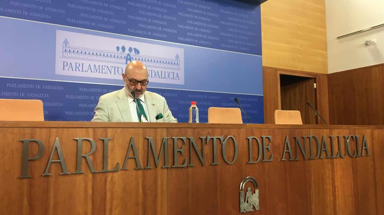 Alejandro Hernández, portavoz parlamentario de Vox en Andalucía.