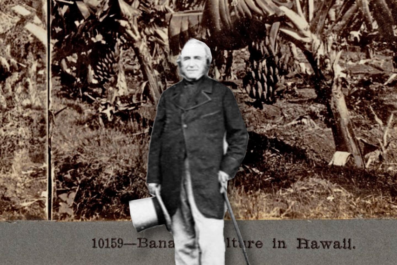 El jardinero Joseph Paxton, creador del plátano Cavendish