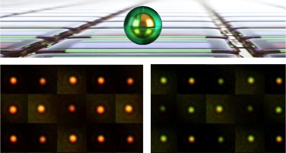 Los nuevo píxeles se forman a partir de nanopartículas de oro (Au NP) encapsuladas en una cubierta de polímero conductor.