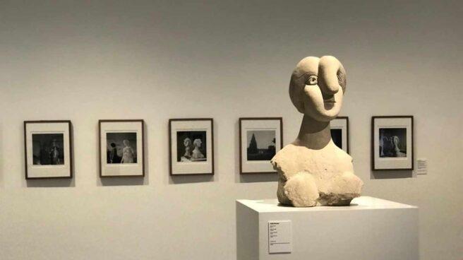 Exposición Picasso.