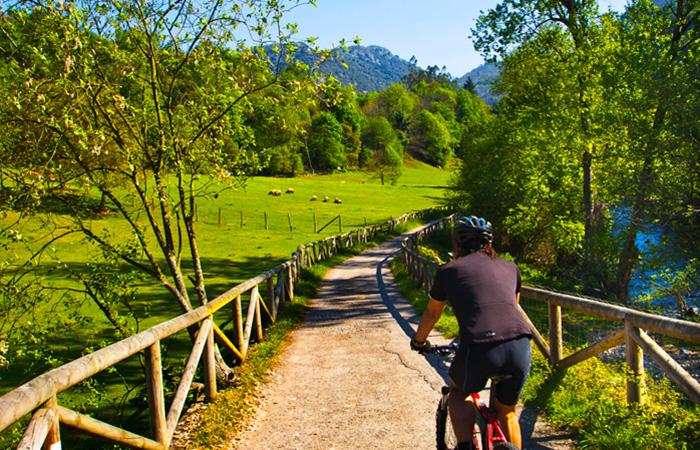 Senda del Oso (Asturias)