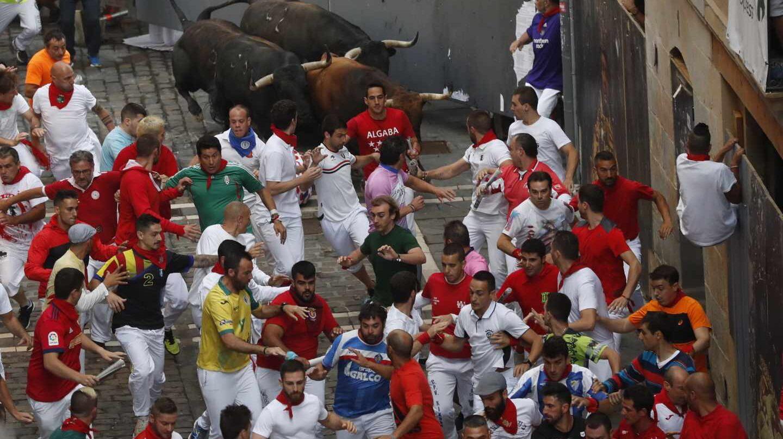 Los toros de Palmosilla en el Séptimo encierro de San Fermín.