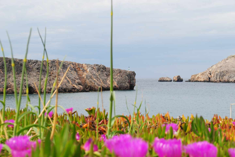 La isla griega de Anticitera busca habitantes y regala casa gratis, terreno y 500 euros al mes.