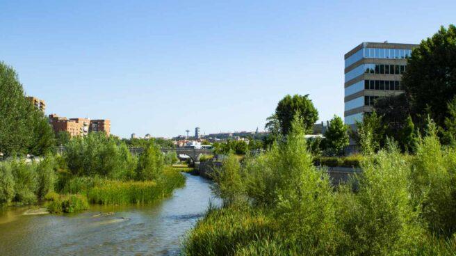 Un tramo del renaturalizado río Manzanares a su paso por Madrid