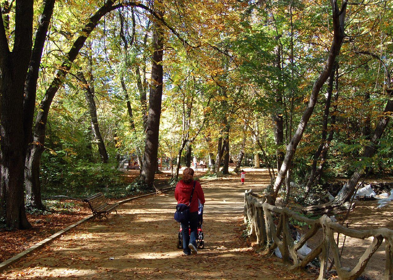 Valladolid - Parque del Campo Grande