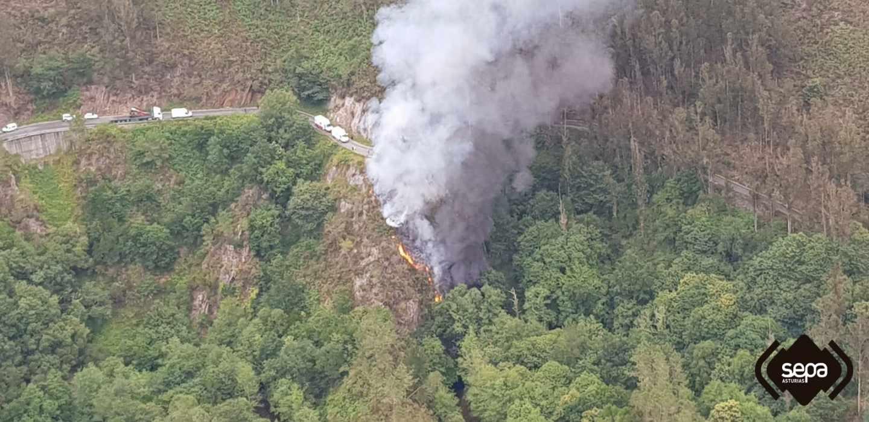 El camionero se salió de la carretera en la AS-35 y murió tras caer por un barranco de 25 metros.