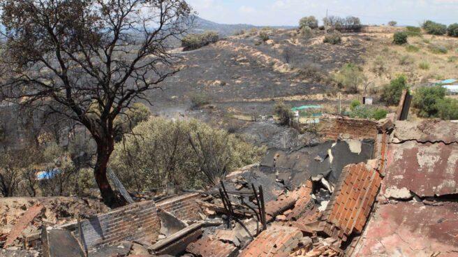 Zona afectada por el incendio que desde el pasado viernes afecta a la zona toledana de Almorox y a las localidades madrileñas de Cadalso de los Vidrios y Cenicientos.
