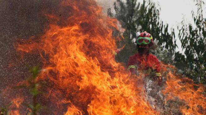 4. Un año marcado por los incendios