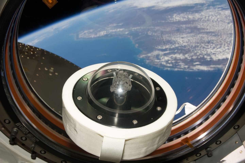 Una roca lunar es transportada a la Tierra en julio de 2009, en conmemoración del 40 aniversario | NASA