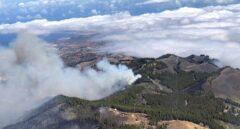 Logran contener el incendio de Gran Canaria pero se temen complicaciones por el viento