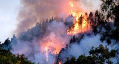 El fuego avanza sin control en Gran Canaria: los incendios ya han arrasado 1.700 hectáreas