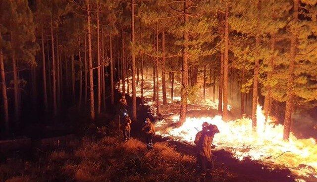 Bomberos trabajan en la extinción del incendio de Gran Canaria