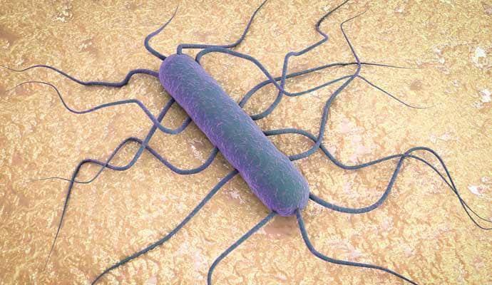 Microbio.