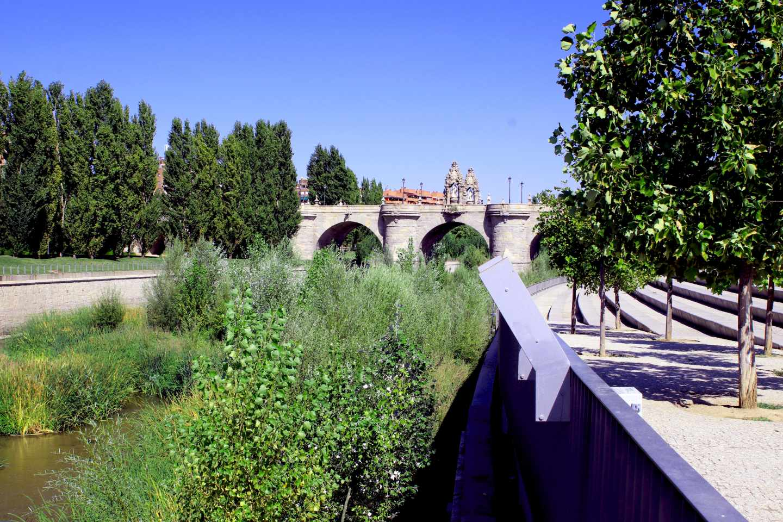 Puente de Toledo después de la renaturalización