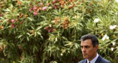 El presidente del Gobierno en funciones, Pedro Sánchez, en el Palacio de Marivent.