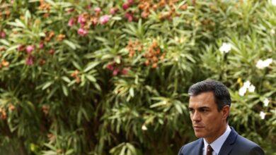 Pedro Sánchez viajará mañana a Gran Canaria para seguir la evolución del fuego