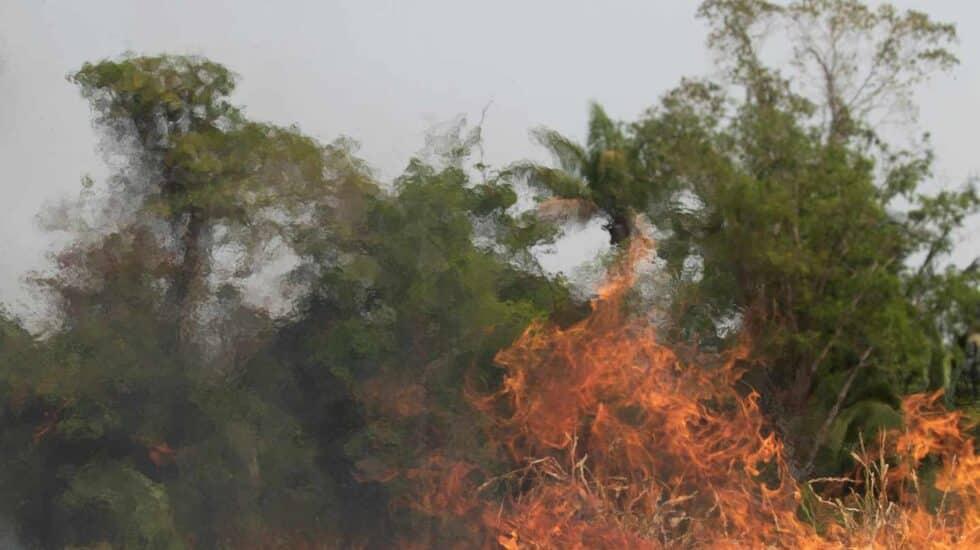 Incendios en el Amazonas.
