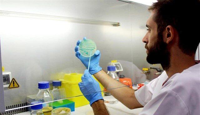 Un investigador sostiene un cultivo de listeria.