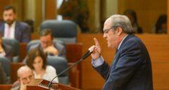 Gabilondo habla en la Asamblea de Madrid el 14 de agosto durante la investidura de Díaz Ayuso.