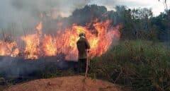 Los países del G-7 acuerdan una ayuda conjunta para sofocar los incendios del Amazonas