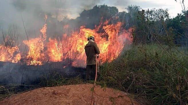 Foco activo de un incendio en la región brasileña de Rio Branco.