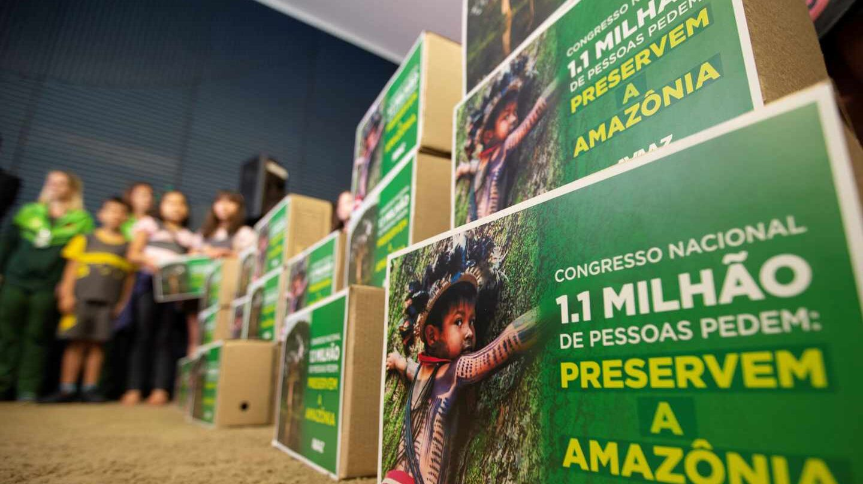 Diversas ONG se han movilizado para reclamar leyes de protección para el Amazonas en Brasil.