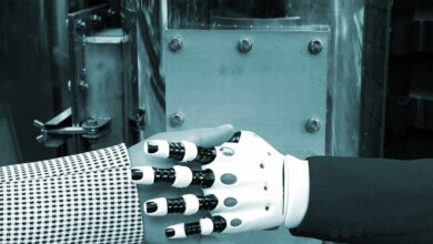 El mito de que la digitalización destruye empleo