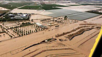 """Greenpeace, Ecologistas y Oxfam demandan al Gobierno """"por inacción ante el cambio climático"""""""