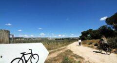 Paseo en bici y picnic con vino en el Duero