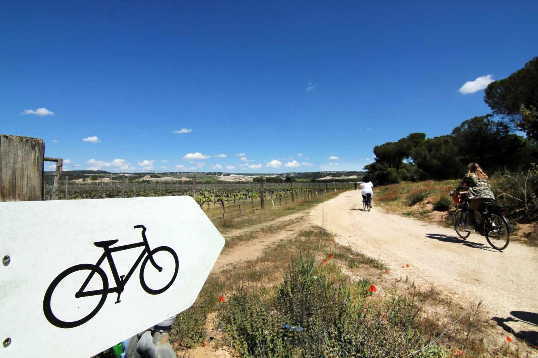 Paseo en bici por Finca Villacreces