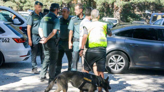 Xena la perra que encontró el cuerpo sin vida de Blanca Fernández Ochoa.