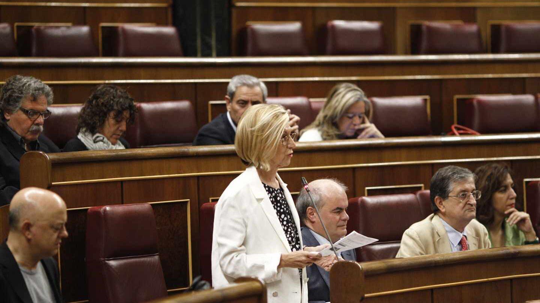 Rosa Díez, en el Congreso de los Diputados.