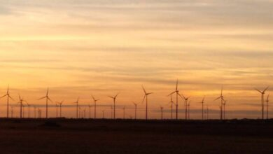 REE intensifica el bloqueo masivo de nuevas renovables para frenar la especulación